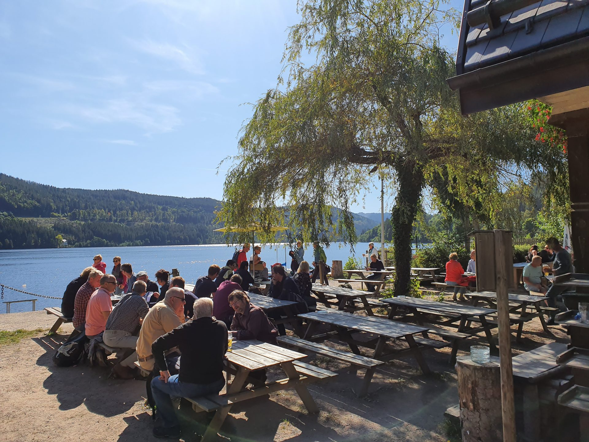 Titisee – Hochfirst – Titisee